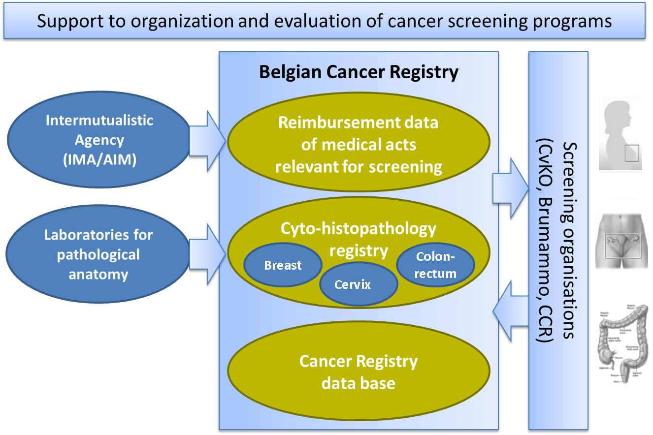 cancer registrar One behind-the-scenes job in the battle against cancer is a cancer registrar   through extensive analysis, the data collected and summarized by cancer.
